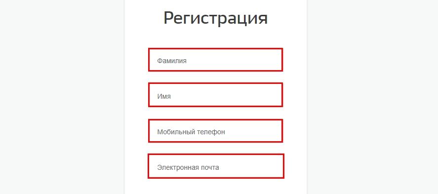 Форма регистрации в портале Госуслуги